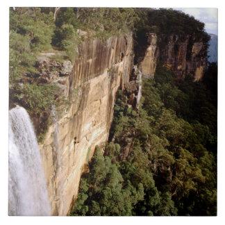 Australia, New South Wales, Fitzroy Falls. Tile
