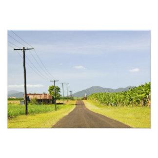 Australia, Queensland, costa del norte, Babinda. Impresiones Fotograficas
