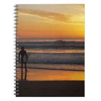 Australia, Queensland, Gold Coast, Surfers at Notebook