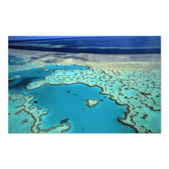 Australia - Queensland - Great Barrier Reef. 2 Photo Print