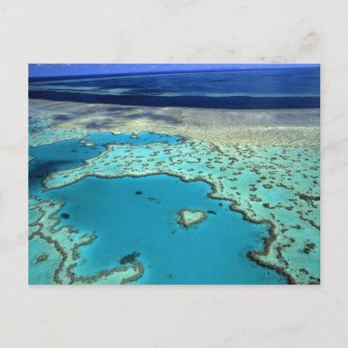 Australia _ Queensland _ Great Barrier Reef 3 Postcard