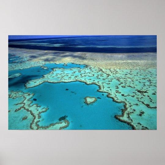 Australia - Queensland - Great Barrier Reef. 3 Poster