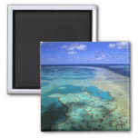 Australia - Queensland - Great Barrier Reef. 4 2 Inch Square Magnet