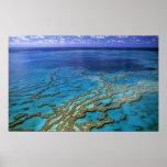 Australia - Queensland - Great Barrier Reef. 6 Poster