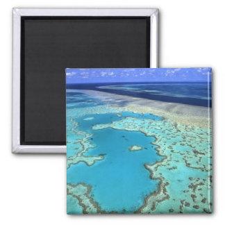 Australia - Queensland - Great Barrier Reef. 7 2 Inch Square Magnet