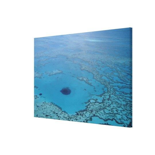 Australia, Queensland. Great Barrier Reef Canvas Print