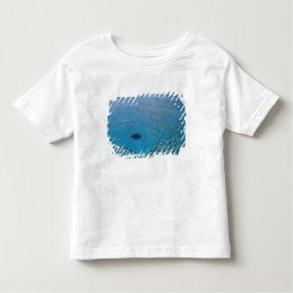 Australia, Queensland. Great Barrier Reef Toddler T-shirt