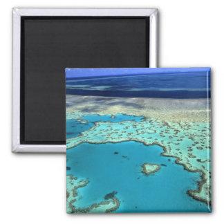 Australia - Queensland - la gran barrera de coral. Imán Cuadrado