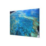 Australia - Queensland - la gran barrera de coral. Impresion De Lienzo