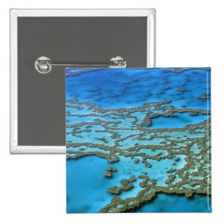 Australia - Queensland - la gran barrera de coral. Pin Cuadrado