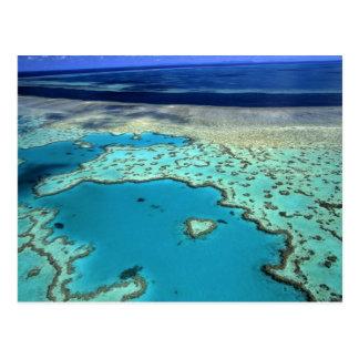 Australia - Queensland - la gran barrera de coral. Postales