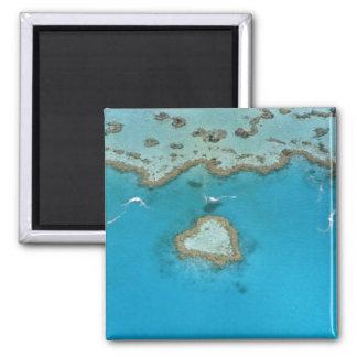 Australia, Queensland, las islas de Whitsunday, Imán Cuadrado