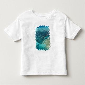 Australia, Queensland, North Coast, Cairns Toddler T-shirt