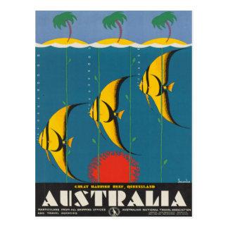 Australia Queensland Vintage Travel Poster Postcard