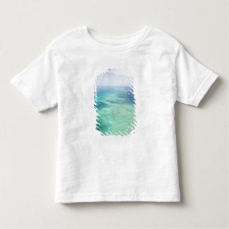 Australia, Queensland, Whitsunday Coast, Great Toddler T-shirt