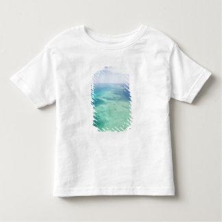 Australia, Queensland, Whitsunday Coast, Great Toddler T-shirt