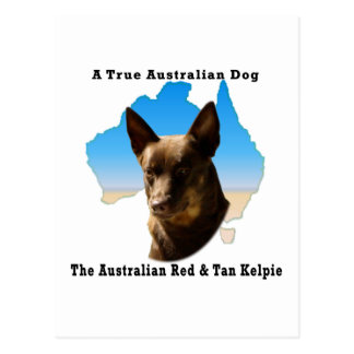 Australia roja y Kelpie del moreno con el mapa Postal