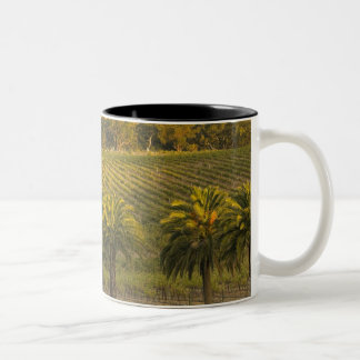 Australia, South Australia, Barossa Valley, Two-Tone Coffee Mug