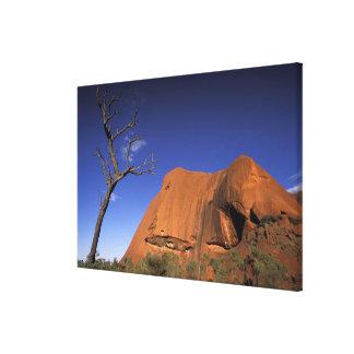 Australia, Uluru Kata Tjuta National Park, Uluru Canvas Print