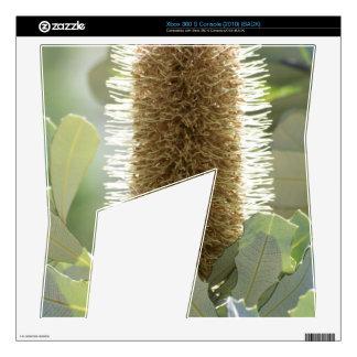 Australian Banksia Flower Xbox 360 S Console Skins