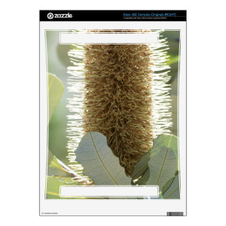 Australian Banksia Flower Skin For The Xbox 360