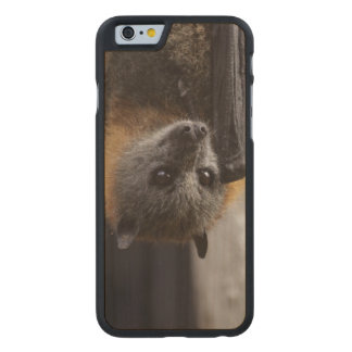 Australian Bat Carved® Maple iPhone 6 Case
