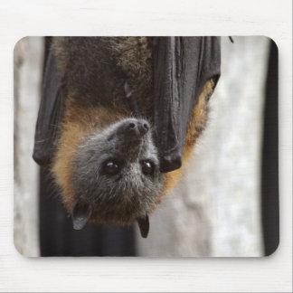 Australian Bat Mouse Pad