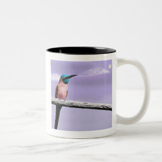 Australian Bee Eater Two-Tone Coffee Mug