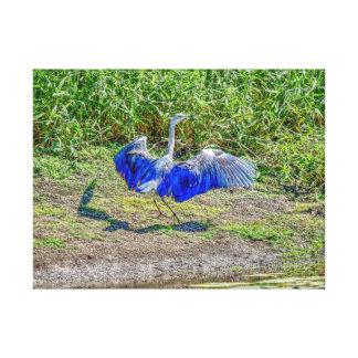 AUSTRALIAN BIRD STORK AUSTRALIA WITH ART EFFECTS CANVAS PRINT