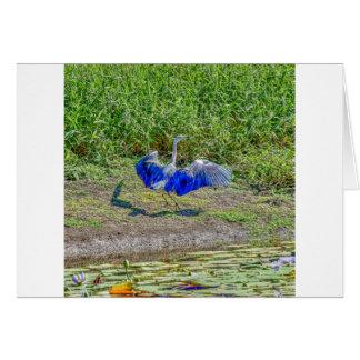 AUSTRALIAN BIRD STORK AUSTRALIA WITH ART EFFECTS CARD