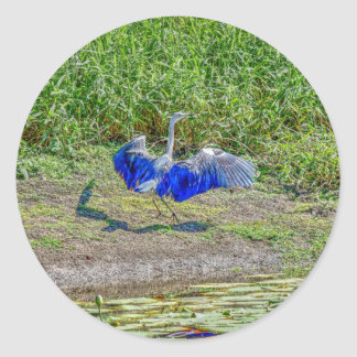 AUSTRALIAN BIRD STORK AUSTRALIA WITH ART EFFECTS CLASSIC ROUND STICKER