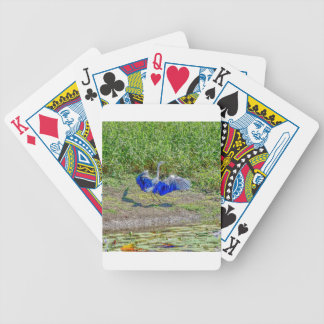 AUSTRALIAN BIRD STORK AUSTRALIA WITH ART EFFECTS BICYCLE PLAYING CARDS