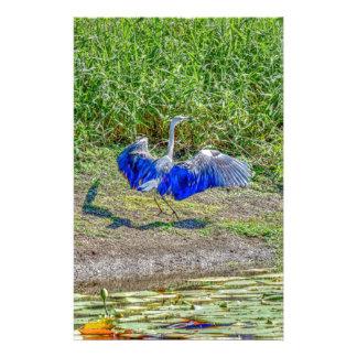 AUSTRALIAN BIRD STORK AUSTRALIA WITH ART EFFECTS STATIONERY