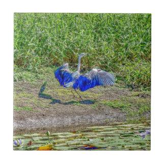 AUSTRALIAN BIRD STORK AUSTRALIA WITH ART EFFECTS TILE