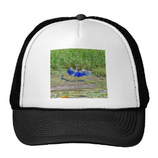 AUSTRALIAN BIRD STORK AUSTRALIA WITH ART EFFECTS TRUCKER HAT