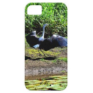 AUSTRALIAN BIRD STORK RURAL QUEENSLAND AUSTRALIA iPhone SE/5/5s CASE
