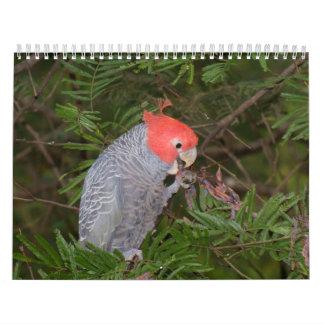 Australian Birds Calendar