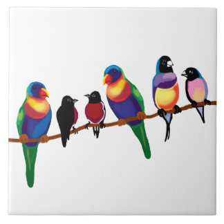 Australian birds tile