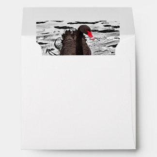Australian Black Swan On Black Water Envelope
