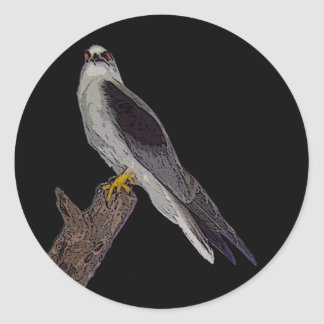 Australian blackshouldered kite classic round sticker
