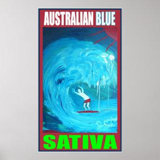 AUSTRALIAN BLUE SATIVA POSTER