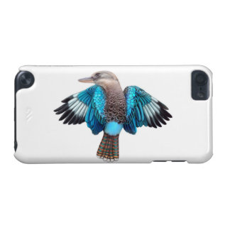 Australian Blue Winged Kookaburra Bird iPod Case