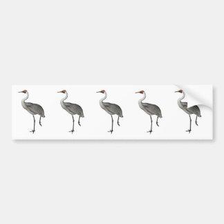 Australian Brolga Bumper Sticker