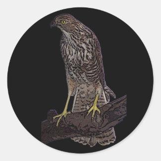 Australian brown goshawk classic round sticker