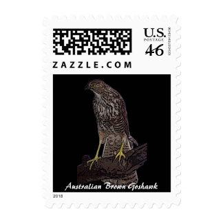 Australian Brown Goshawk stamp