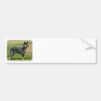 Australian Cattle Dog 9F060D-06 Car Bumper Sticker