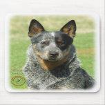 Australian Cattle Dog 9F061D-04_2 Mouse Pads