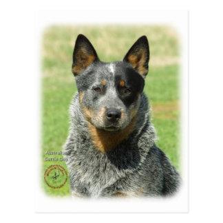 Australian Cattle Dog 9F061D-04_2 Postcard