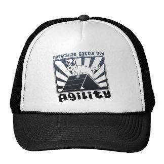 Australian Cattle Dog Agility A-Frame Mesh Hats