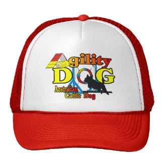 Australian Cattle Dog Agility Mesh Hat